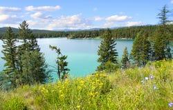 Dickey湖蒙大拿 库存照片