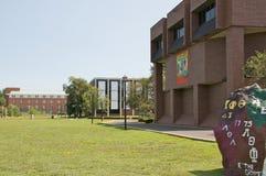 dickinson fairleigh uniwersytet Zdjęcie Royalty Free