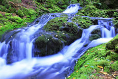 Liten vattenfall på den Dickson bäcken Arkivbild
