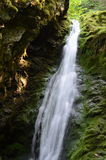 Dickson Falls, parco nazionale di Fundy Fotografia Stock Libera da Diritti