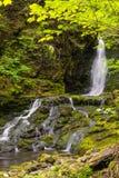 Dickson Falls (tempo di otturazione lento) Fotografia Stock Libera da Diritti