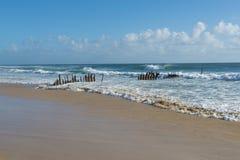 Dicky Beach Caloundra Sunshine Coast Stockbild