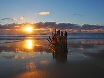 Dicky Beach-Wrack Stockfoto