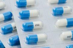 Dicloxacillin-Kapsel in der Blisterpackung Lizenzfreies Stockfoto