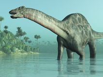 dicraeosaurus恐龙 免版税库存照片