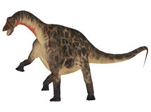 Dicraeosaurus Photo stock