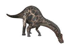 Dicraeosaurus de dinosaure du rendu 3D sur le blanc Photos stock