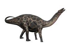 Dicraeosaurus de dinosaure du rendu 3D sur le blanc Photos libres de droits