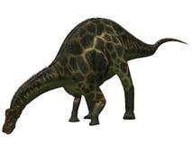 Dicraeosaurus - dinosaur 3D Photographie stock