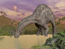 Dicraeosaurus dinosaur drinking - 3D render Stock Photos