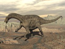 Dicraeosaurus dinosaur walking - 3D render Royalty Free Stock Image