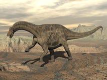 Dicraeosaurus dinosaur walking - 3D render Royalty Free Stock Image