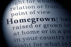 Dictionary definition of homegrown Stock Image