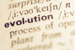 Dictionary definition of word evolution Royalty Free Stock Images