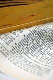 dictionary page rip Στοκ Εικόνες
