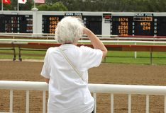 Did I win?. Elderly woman at horse race track Stock Photos