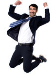 We did it ... Yay!. Excited businessman on knees, studio shot Royalty Free Stock Image