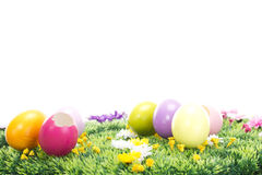 Did you find all Easter eggs?. Did you find all Easter eggs this year Royalty Free Stock Images