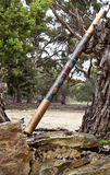 didgeridoo одиночное Стоковое фото RF