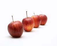 Die Äpfel, die als Zeile und nur die angeordnet werden, wird fokussiert lizenzfreies stockbild