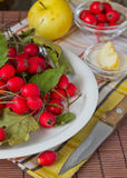 Die Äpfel und die Rotbeeren Lizenzfreie Stockbilder