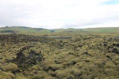 Die Überreste des Vulkans machen schöne Landschaft in Island Lizenzfreie Stockfotografie