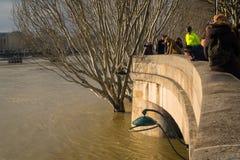 Die überschwemmte Seine und Touristen lizenzfreie stockfotos