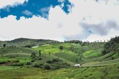 Die Abbildung des Lebens umgeben durch Berge und Himmel Stockfotografie