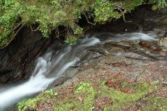Die Abbildung wird im frühen Herbst in den Bergen polar gebildet Lizenzfreie Stockfotos