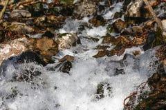 Die Abbildung wird im frühen Herbst in den Bergen polar gebildet Stockfotografie