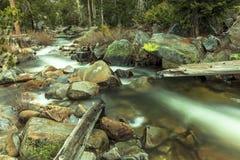 Die Abbildung wird im frühen Herbst in den Bergen polar gebildet Stockfoto