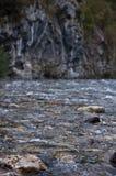 Die Abbildung wird im frühen Herbst in den Bergen polar gebildet Lizenzfreies Stockbild