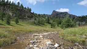 Die Abbildung wird im frühen Herbst in den Bergen polar gebildet Alpine Landschaft, ein Tal mit vielen Kiefern, der Strom und die stock footage