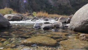 Die Abbildung wird im frühen Herbst in den Bergen polar gebildet Forest River Vertikales Panorama von 3 HDR Bildern Wasser Sehen  stock video