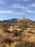 Die Aberglaubeberge in Arizona lizenzfreies stockbild
