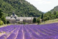 Die Abtei von Sénanque, Provence, Stockfotografie