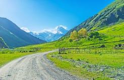 Die Ackerlande in Sno-Tal Lizenzfreie Stockfotografie