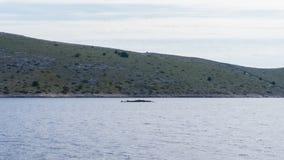 Die adriatisches Seeansicht schöne Bildtapete Lizenzfreies Stockfoto