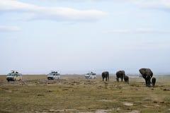 Die Afrika-Elefantfamilie und die Safarijeeps lizenzfreie stockbilder