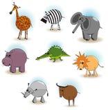 Die afrikanischen Tiere Stockfoto