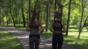 Die aktiven sportlichen Eignungsfrauen, die in Sommer laufen, parken stock video footage