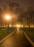 Die Allee des Stadtparks nachts Stockfotografie