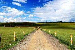 Die Almlandschaft auf der Hochebene Qinghais Tibet Stockbilder