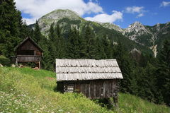 Die Alpe von Grintovica Stockbilder