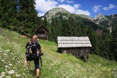 Die Alpe von hohem Grintovica Lizenzfreies Stockbild