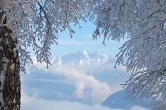 Die Alpen Stockfoto
