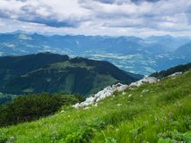 Die Alpen im wolkigen Wetter Große Berge Sommerfeld mit Kräutern stockfotos