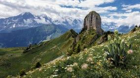 Die Alpen - Schynige Platte - die Schweiz lizenzfreie stockfotos