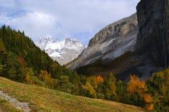 Die alpine Landschaft stockbilder