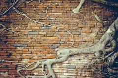Die alte Backsteinmauer am Tempel Stockfotos